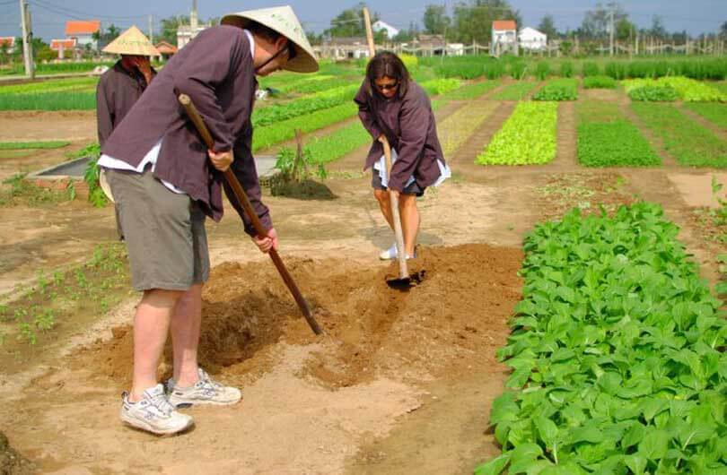 Become a one-day Vietnamese farmer